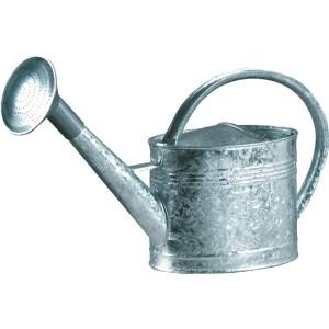 https://www.bazari.fr/2813-thickbox/arrosoir-galvanise-guillouard-6-litres.jpg